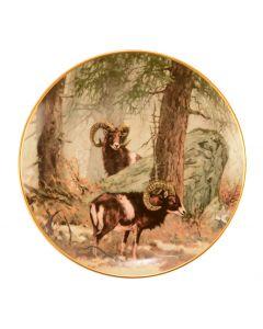 HANNES LIEDERLEY  Kaiser -  Porzellan - Teller Mufflons